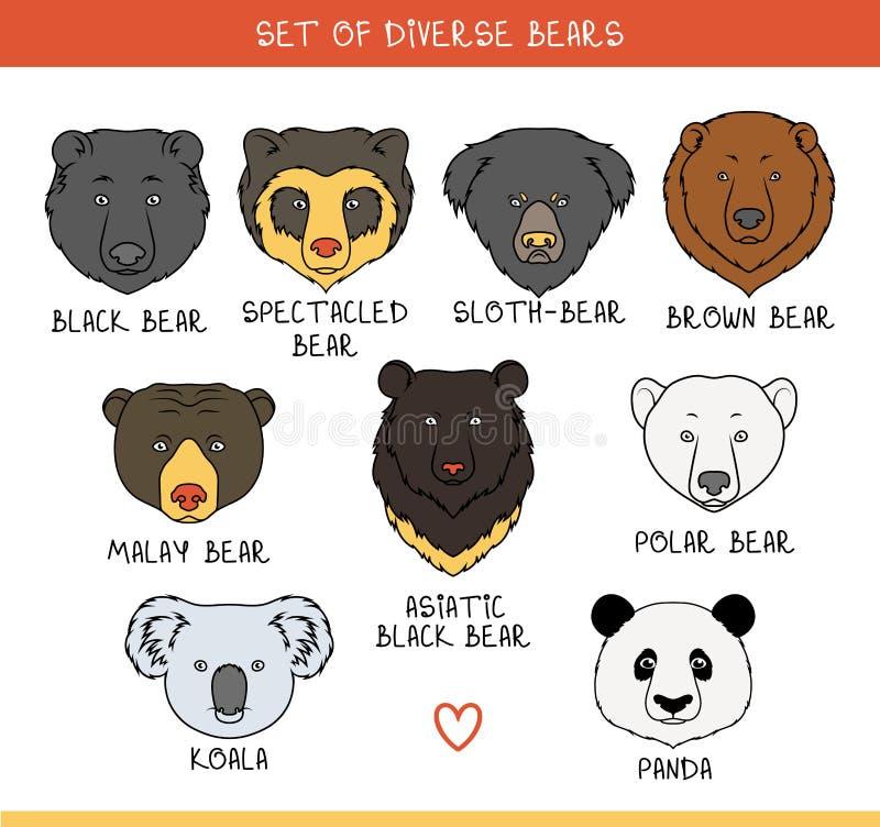 L'insieme 9 mette la museruola agli orsi fatti a mano nello stile lineare Fronti dell'orso illustrazione di stock