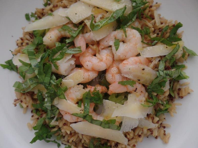 L'intera insalata nutriente del grano con i gamberetti, le erbe ed i trucioli di parmigiano è servito in una ciotola bianca fotografie stock