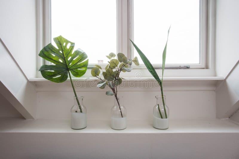 L'interno alla moda del giardino domestico con differenti vasi ceramici e concreti sul davanzale della finestra immagini stock