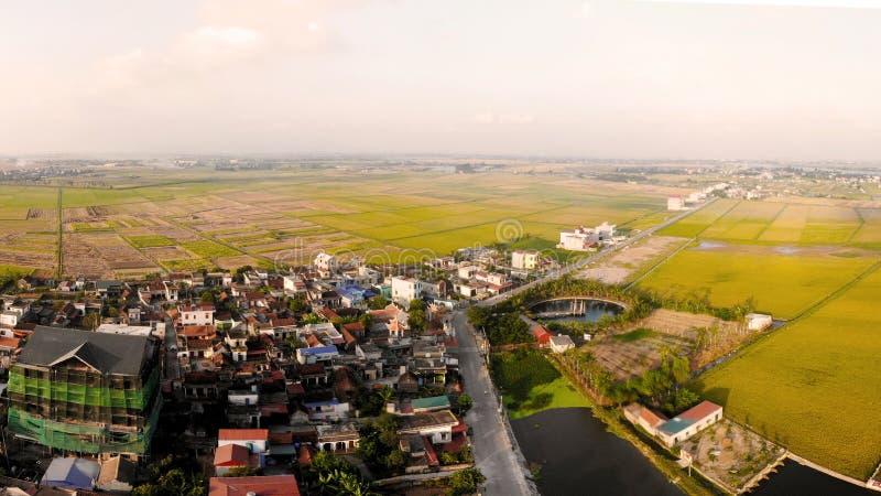 L'intero villaggio è piccolo nella stagione di riso dorato immagine stock