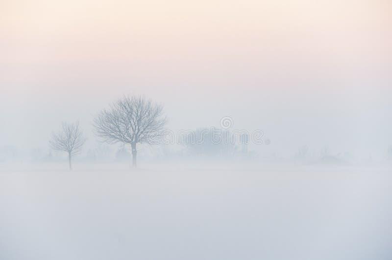L'inverno 1 fotografia stock