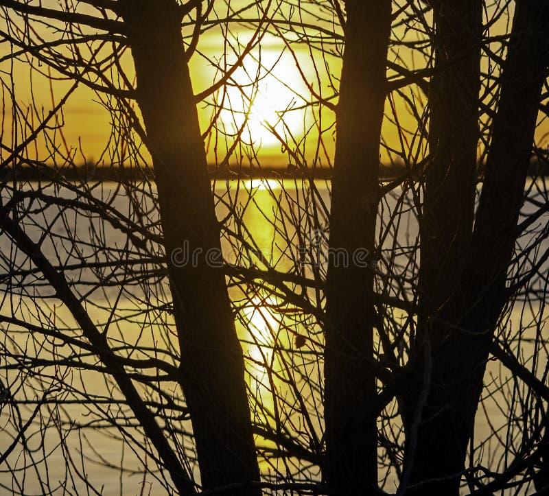 L'Inverno Sunrise Su Un Lago Calmo Colorado fotografie stock libere da diritti