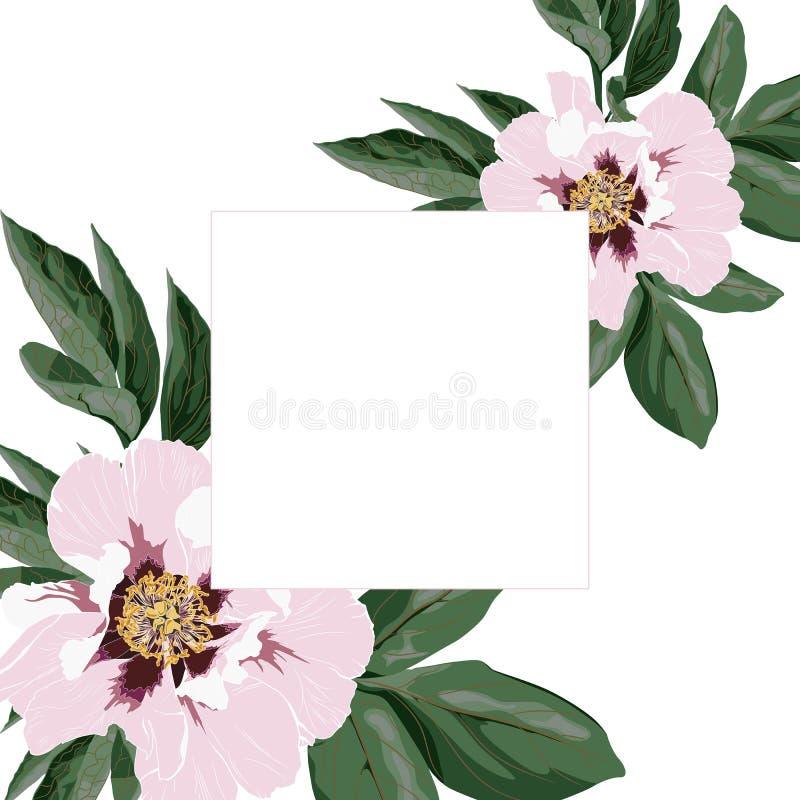 L'invitation de mariage, florale invitent remercient vous, le design de carte moderne de rsvp avec la fleur rose de pivoine et la illustration de vecteur