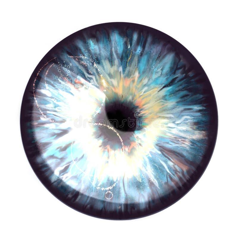 L'iris avec un éclair du soleil s'est reflété dans lui illustration stock