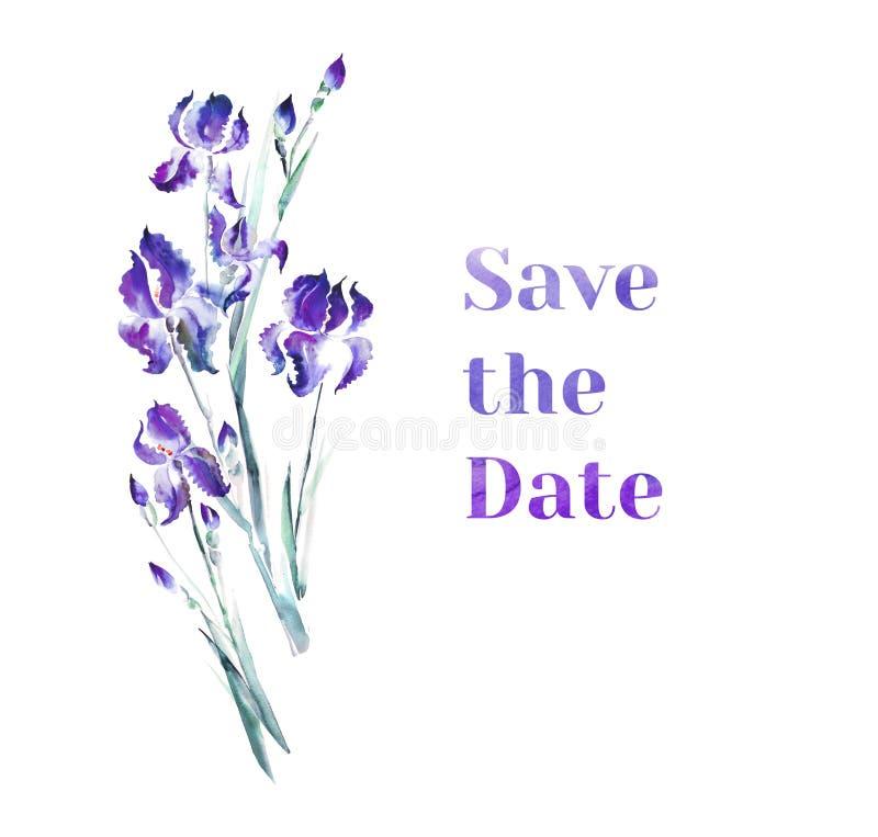 L'iris violet fleurit le bouquet illustration stock
