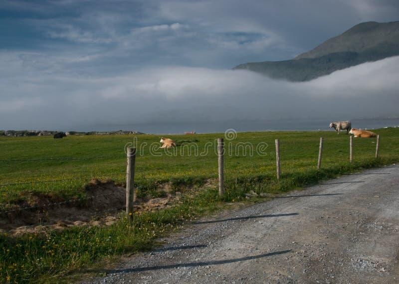 l'Irlande, Connemara, Co.Galway images stock