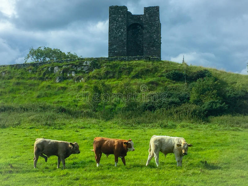 L'Irlande du Nord - le Winterfell images stock