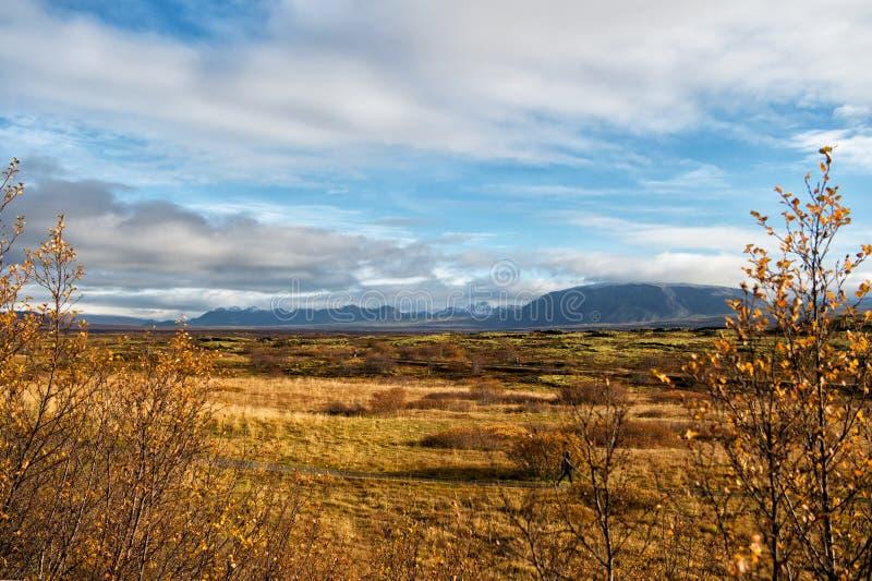 L'Islande raffinent la vue de paysage avec le champ à reykjavik paysage d'automne de thingvellir simple Temps et climat nature photo libre de droits