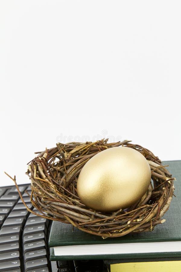 L'istruzione è l'uovo di nido moderno immagine stock