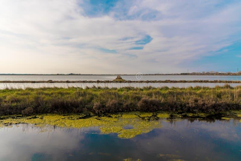 L'Italie, Cervia, panorama salin de nature image libre de droits