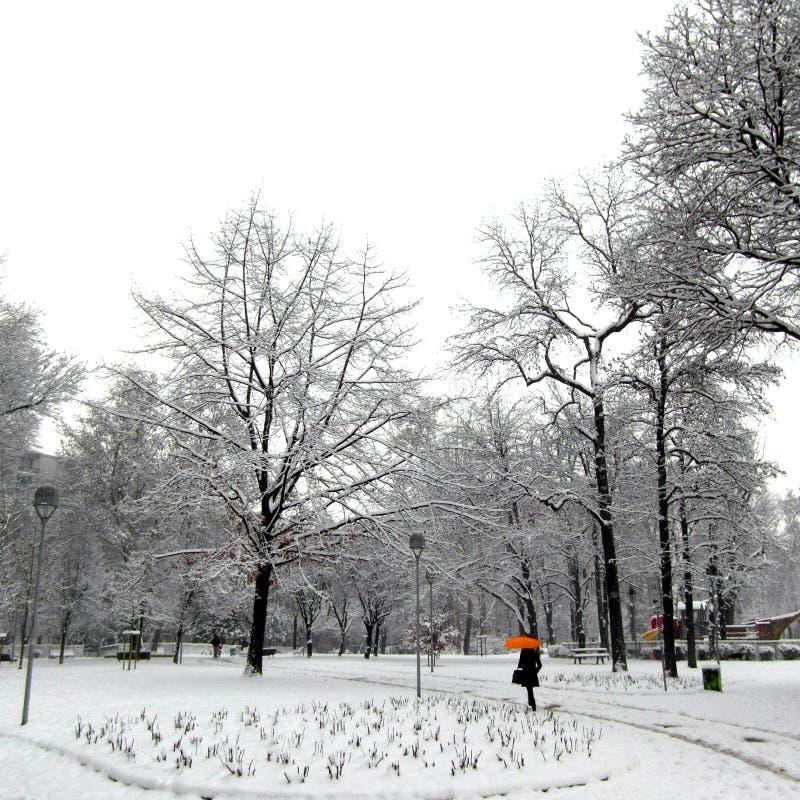 L'Italie 2012 Parc de Solari photo libre de droits