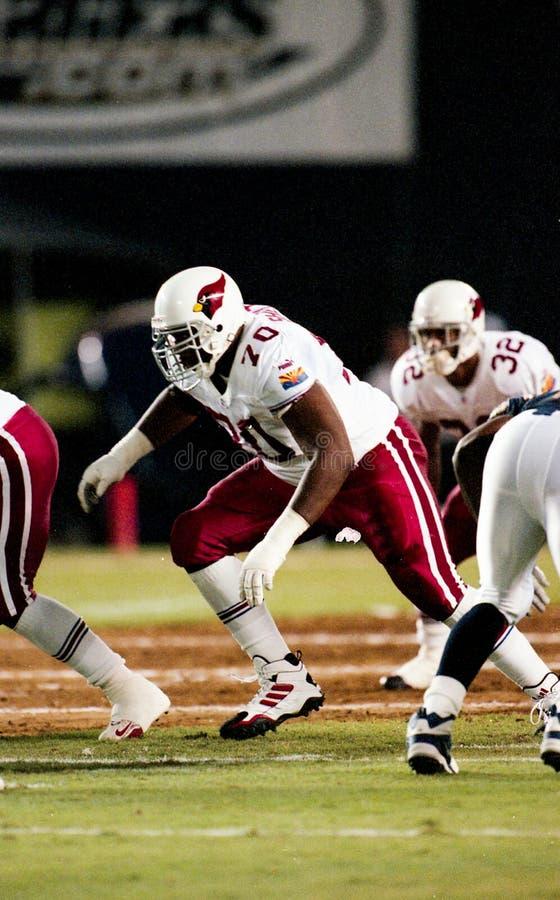 L J Shelton, Arizona Cardinals immagine stock libera da diritti