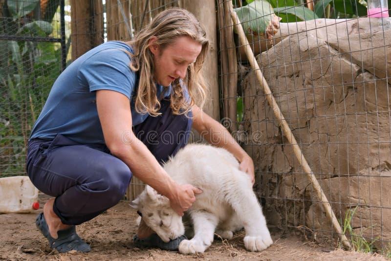 L'jeune homme fait des amis avec l'petit animal blanc de lionne images libres de droits