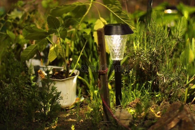 L?mpada bonita no jardim Lâmpada com bateria solar imagem de stock royalty free