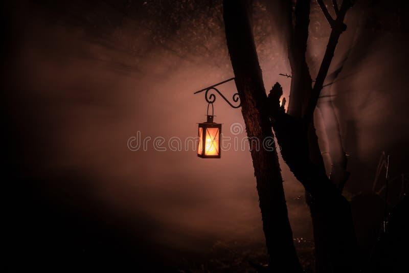 L?mpara iluminada colorida hermosa en el jard?n en noche brumosa Linterna retra del estilo en la noche al aire libre imágenes de archivo libres de regalías