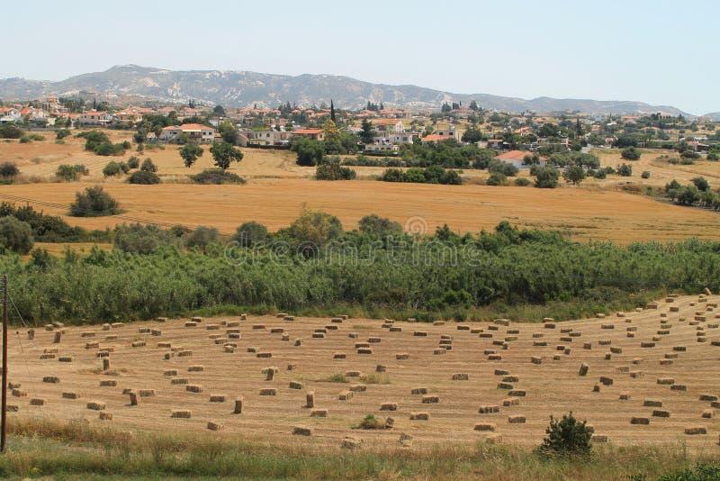 L?ndliche Landschaft mit Feldern und Bergen stockfotos