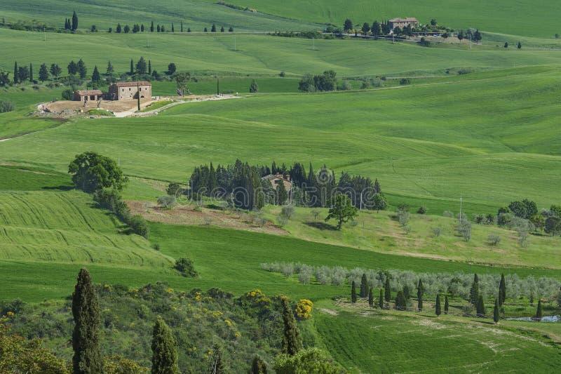 L?ndliche Landschaft in Toskana, Italien stockbilder