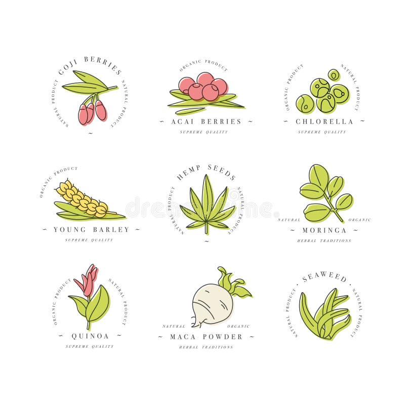 L?nea iconos de Superfoods del vector. Cerezas, polvo, hortalizas o frutas y semillas. Superfoods org?nicos para la salud y la die libre illustration