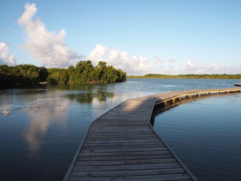 L'observatoire de l'étang salin Martinique photos libres de droits