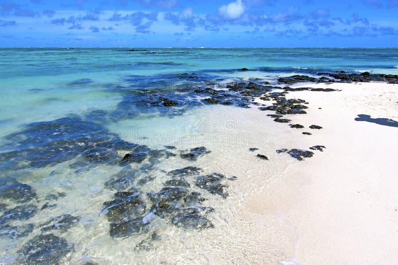 l'Océan Indien et roche d'algue de beach ile du cerfs photo stock