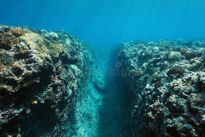 L'océan pacifique de fossé naturel sous-marin de paysage photo stock