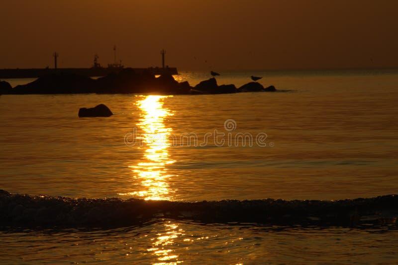 L Océan Silhouette Le Coucher Du Soleil Photographie stock libre de droits
