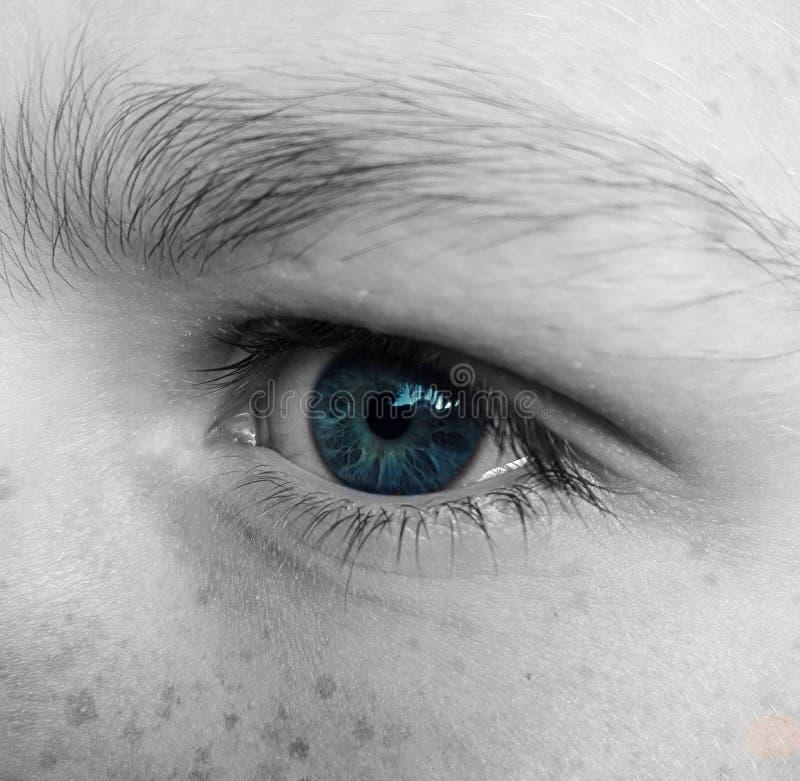 L'occhio azzurro fotografia stock