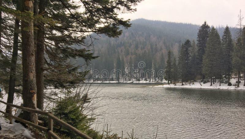 L'occhio di Carpathians immagine stock