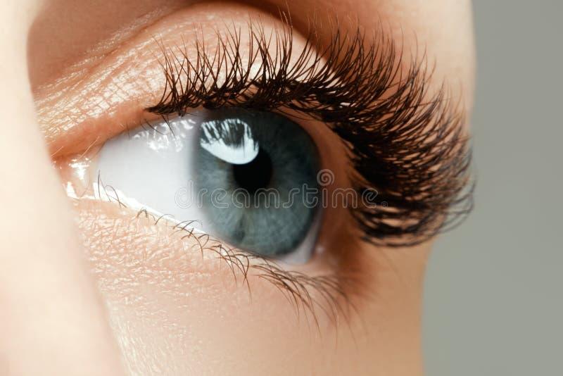 L'occhio femminile con i cigli lunghi si chiude su Primo piano sparato della femmina fotografia stock libera da diritti