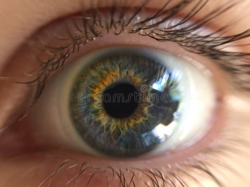 L'occhio lo vede immagini stock libere da diritti