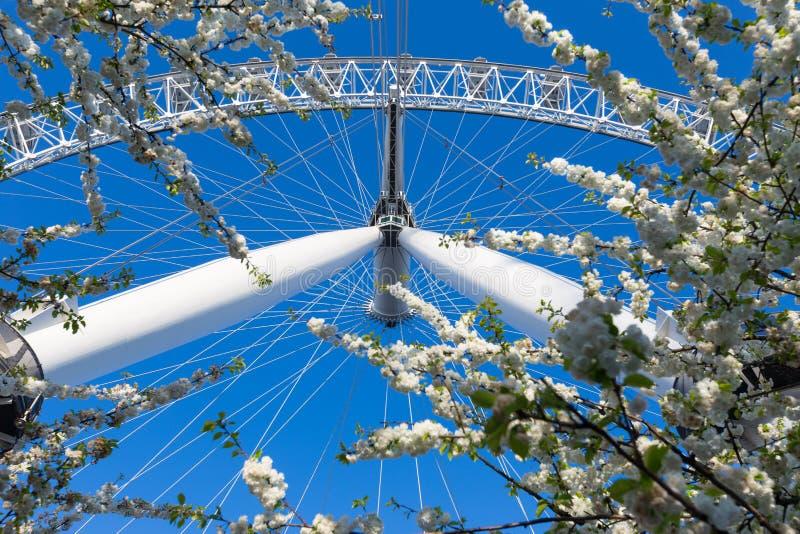 L'oeil de Londres, roue de ferris, se tient grand contre le ressort bleu profond s images libres de droits