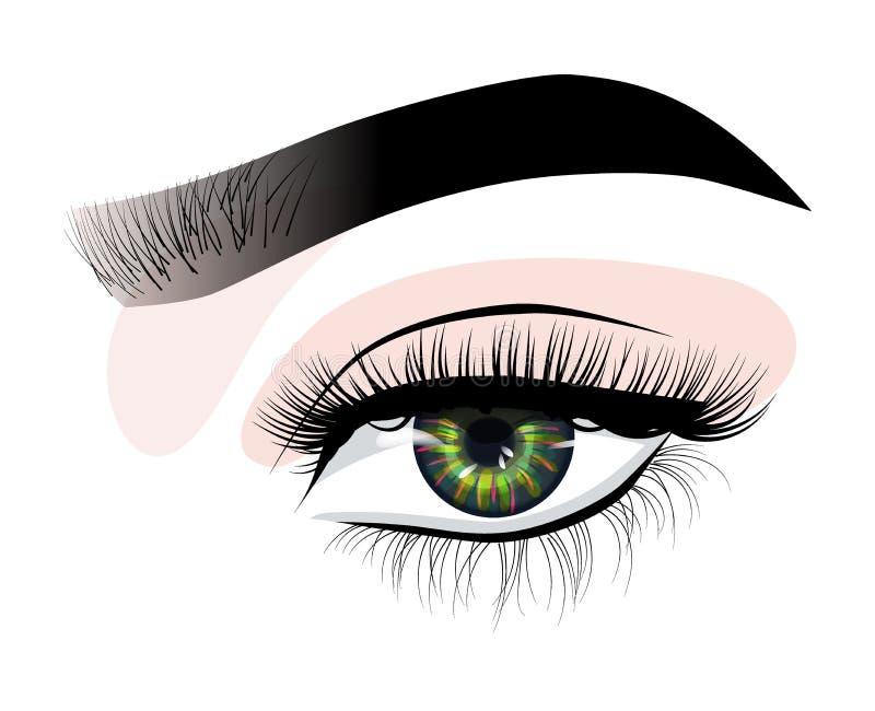 L'oeil luxueux sexy de la femme tirée par la main avec les sourcils parfaitement formés et les pleines mèches Idée pour la carte  illustration de vecteur