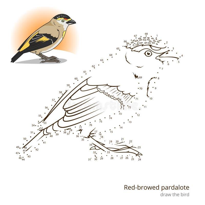 L'oiseau browed rouge de pardalote apprennent à dessiner le vecteur illustration libre de droits