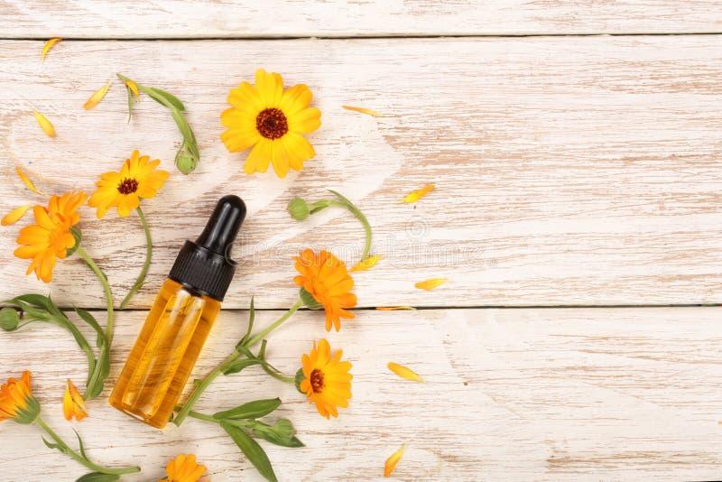 L'olio essenziale di aromaterapia con il tagete fiorisce su fondo bianco con lo spazio della copia per il vostro testo Vista supe immagini stock