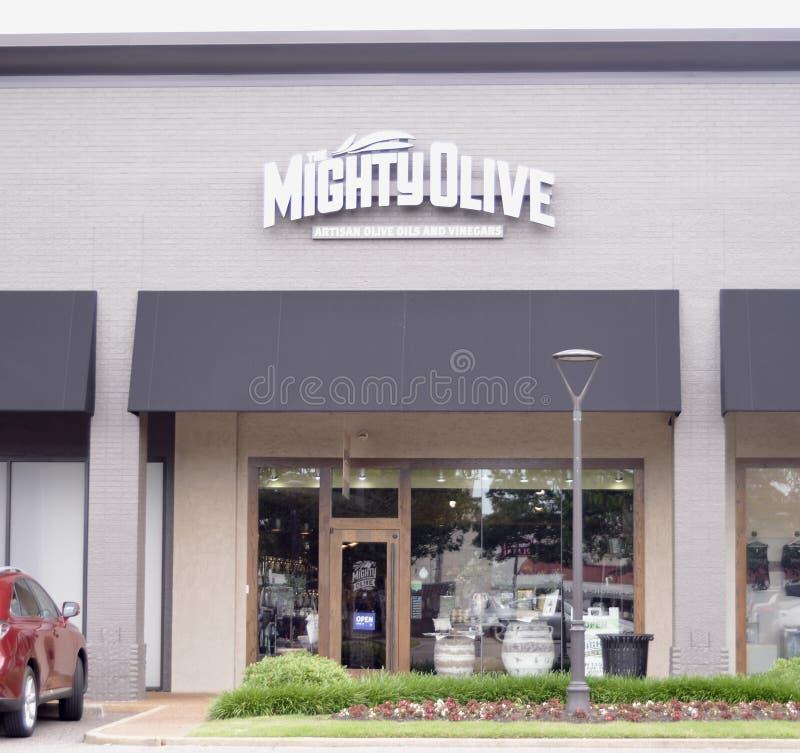 L'olive puissante, Memphis, TN photographie stock