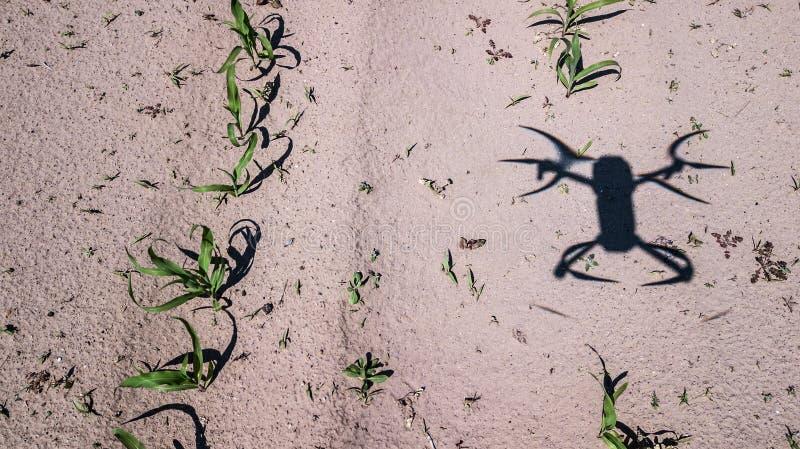 L'ombra di un quadcopter sul campo fotografie stock
