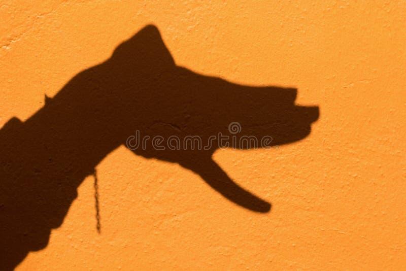 L'ombre de l'animal de moyen de symbole de main aiment un chien sur le dos orange de mur photo libre de droits