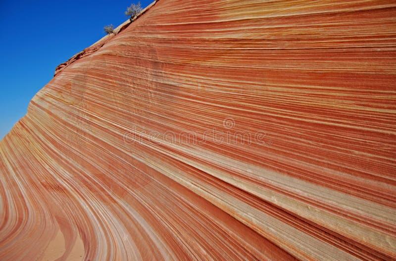 L'onde, Utah 2 photographie stock libre de droits