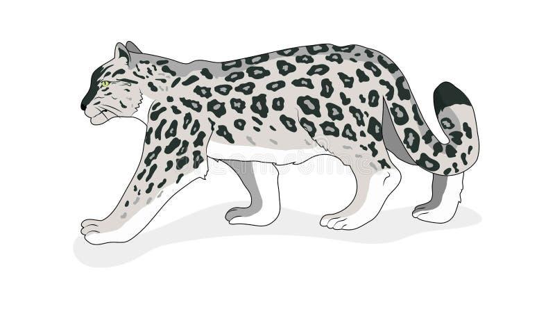 L?opard de neige D'isolement Style plat Vecteur Fond blanc illustration stock