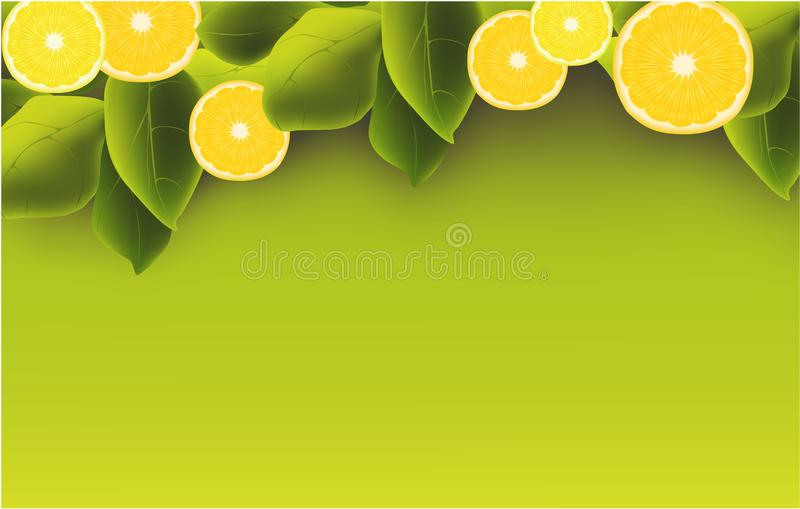 L'orange, citron, part de l'été de Curtis de fruits de bannière illustration stock
