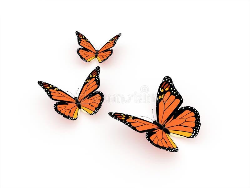 L'orange de papillon rendent d'isolement illustration stock