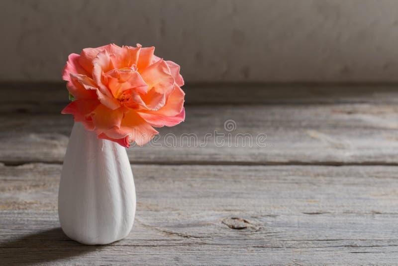 L'orange s'est levée dans peu de vase sur le vieux fond photo stock