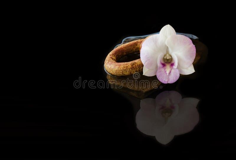 l'orchidée de violette blanche fleurit sur le fond de noir de l'eau image stock