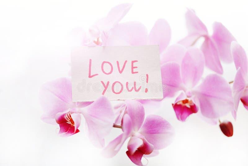 L'orchidea con un segno vi ama immagini stock