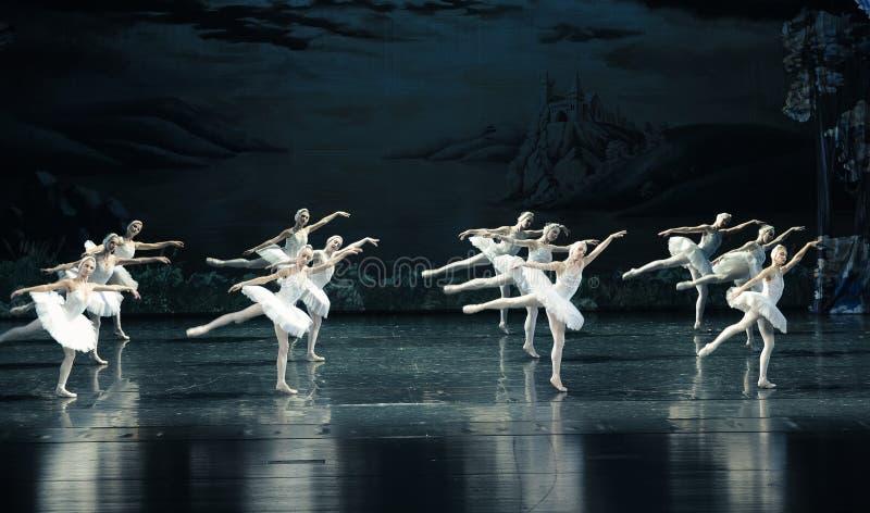 L'ordinato nella formazione di lago swan di balletto-balletto immagine stock libera da diritti