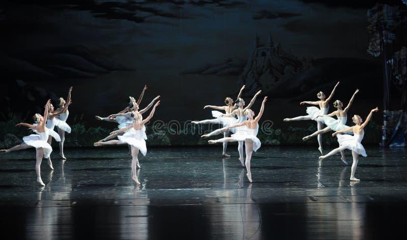 L'ordonné dans la formation du lac swan de ballet-ballet image stock