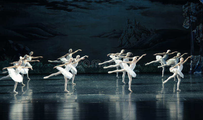 L'ordonné dans la formation du lac swan de ballet-ballet image libre de droits