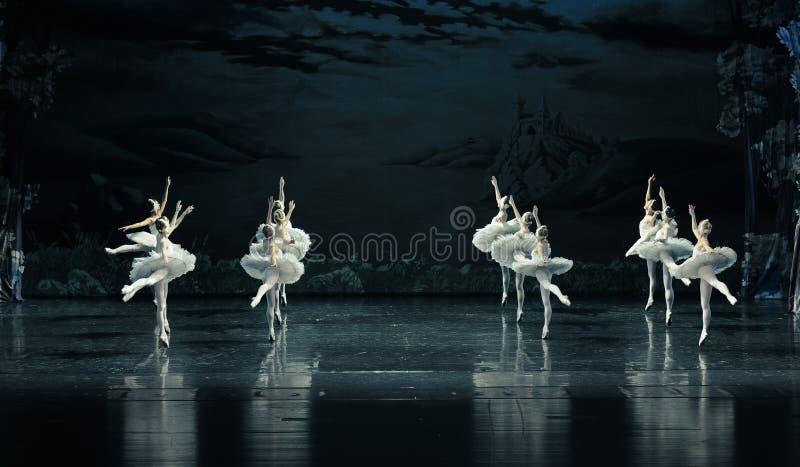 L'ordonné dans la formation du lac swan de ballet-ballet photo libre de droits