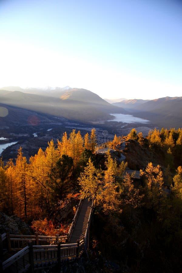 L'orgoglio della mattina in montagna fotografia stock libera da diritti