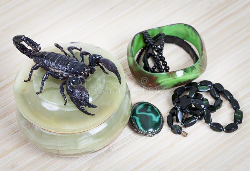 L'ornement des femmes avec le scorpion photo stock